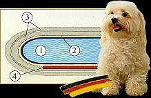 Tasso Doggy Bett